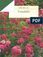 Trandafiri-pdf.pdf