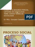 Tema 12 Sociologia