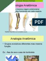 Biotipologia e Planimetria Anatômica