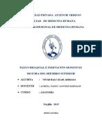 MONOGRAFIA  PLEXO  BRAQUIAL1