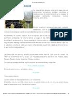 El Vino_ Cultura y Etiqueta Social