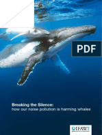 IFAW Australia Breaking the Silence-how Our Noise Pollution is Harming