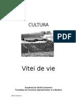 Cultura Vitei de Vie.docee734