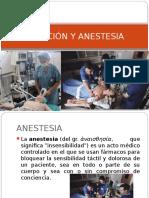 sedacion y anestesia