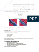 Lectura. Shock - PDF