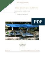 March 2010 Final Relief Workshop Summary PDF