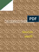 CALDEANDO_DAMASCOS---MARCOS_SOARES_RAMOS_CABETE_EDITOR_J_R_R_ABRAHAO.pdf