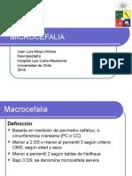 Microcefalia y Macrocefalia