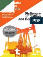 Dictionnaire Du Forage Et Des Puits