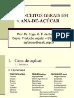 Conceitos Cana-De-Acucar 2011