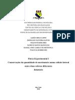 11º Rel Fís Exp I - Colisão Elástica Lateral