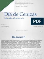 Dia de Ceniza Salvador Garmendia