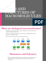 types and structures of macromolecules  1