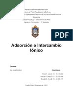 288805066 Adsorcion e Intercambio Ionico