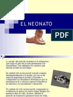El Neonato