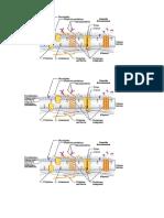 Membrana Celular ( Estructura )