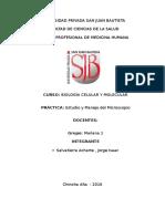 INFORME Estudio y Manejo Del Microscopio Jorge