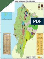 Mapa Nacionalidades