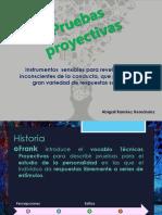 Pruebas proyectivas.pdf