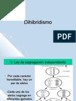 7-_Dihibridismo