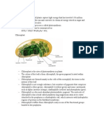 STPM BIOLOGY Photosynthesis