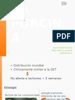 1504634507.DIARREA EPIDEMICA PORCINA.pptx