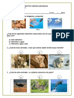 Diagnostic o ciencias segundo