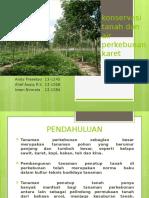Konservasi Tanah Dan Air Perkebunan Karet