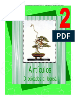 Art Dedicados Al Bonsai2