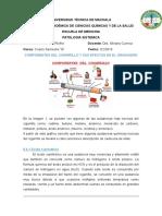 Componentes Del Cigarrillo y Sus Efectos en El Organismo