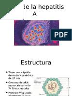 Virologia y Estructura