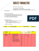 08proiect_didactic.doc