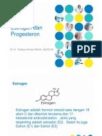 Estrogen-dan-Progesteron.pdf