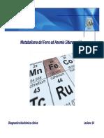 metabolismo del ferro
