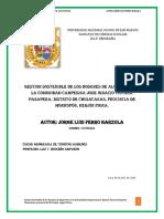 GESTION SOSTENIBLE DE LOS BOSQUES DE ALGARROBO EN LA COMUNIDAD CAMPESINA JOSE IGNACIO TAVARA PASAPERA, DISTRITO DE CHULUCANAS, PROVINCIA DE MORROPÓN, REGIÓN PIURA.