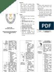 249038917-Leaflet-Senam-Otak.docx