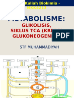 Kuliah 11 Glikolisis Tca(Krebs) Glukoneogenesis