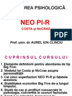 aNEO PI-R