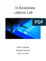 dna restriction analysis lab report