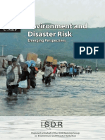 Environment and disaster risk