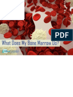 Bone Marrow Book