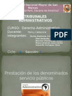 Expo Tribunales Administrativos Final