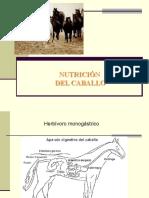 Nutrición de Caballos