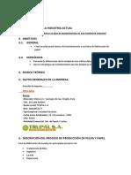 modelo de informe.pdf