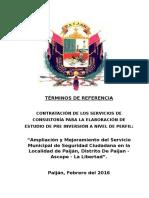 12.Tdr Pip Seguridad Ciudadana Final (1)