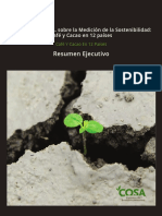 COSA Report Executive Summary Espanol