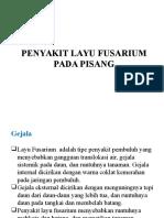 Penyakit Layu Fusarium Pisang Revisi