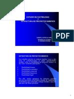5.-Estructura de Proyectos Mineros