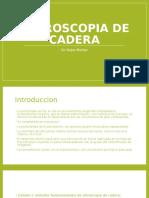 Artroscopia de Cadera