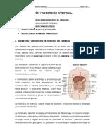 Tema II. Digestión y Absorción Intestinal